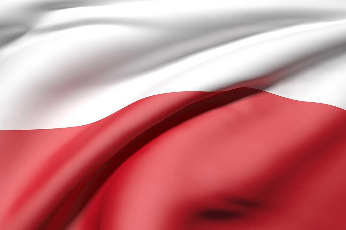 Dolmetscherin polnisch